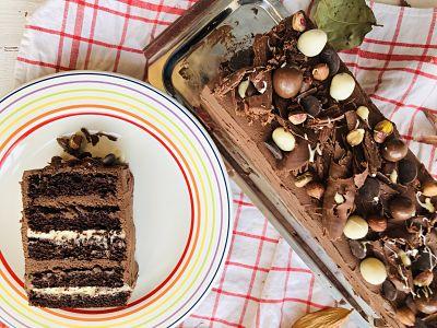 Tort Natacha cu cremă de ciocolată albă, piure de caise și ganache de ciocolată